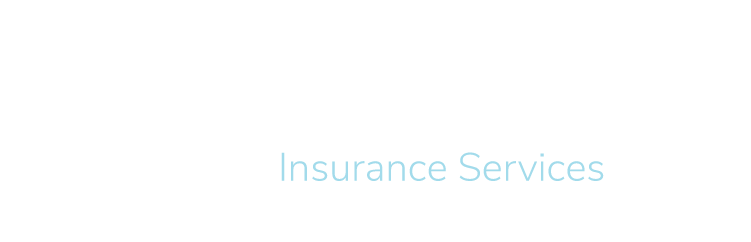 Bluestone Insurance Logo - No Diamond